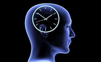 creier-timp